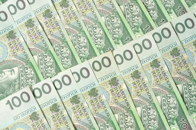 Przeciętne wynagrodzenie brutto w styczniu br. wyniosło 3 tys. 666,41 złotych - poinformował GUS /© Panthermedia