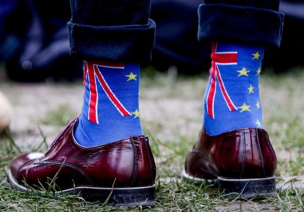 Przeciwnik brexitu w czasie demonstracji przed gmachem Parlamentu Europejskiego w Brukseli, 30 stycznia 2020 /STEPHANIE LECOCQ  /PAP/EPA