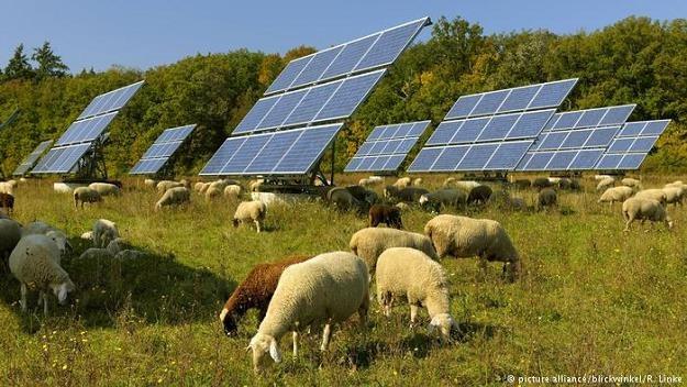 """Przed 10 laty zaledwie 16 proc. produkowanego w RFN prądu było """"eko"""" /Deutsche Welle"""