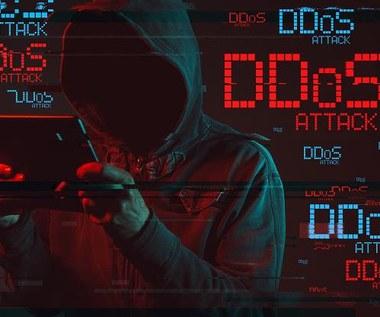 Przed atakami DDoS można się bronić