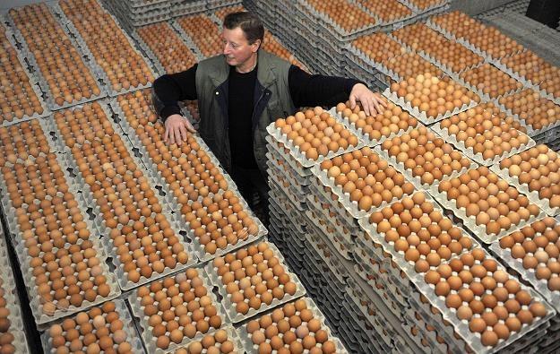 Przed każdą Wielkanocą jaja drożały, w tym roku tanieją /PAP