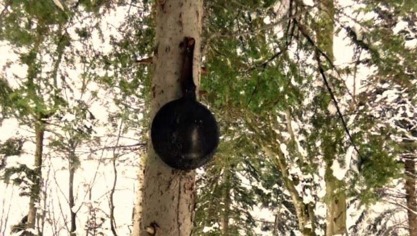 Przed opuszczeniem obozowiska wszystkie przedmioty, łącznie z patelnią, wieszane są wysoko, żeby niedźwiedź się skusił /Sławek Zagórski /INTERIA.PL