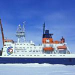 Przed pandemią nie uciekniesz nawet do Arktyki