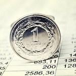 Przedawnienie straty podatkowej