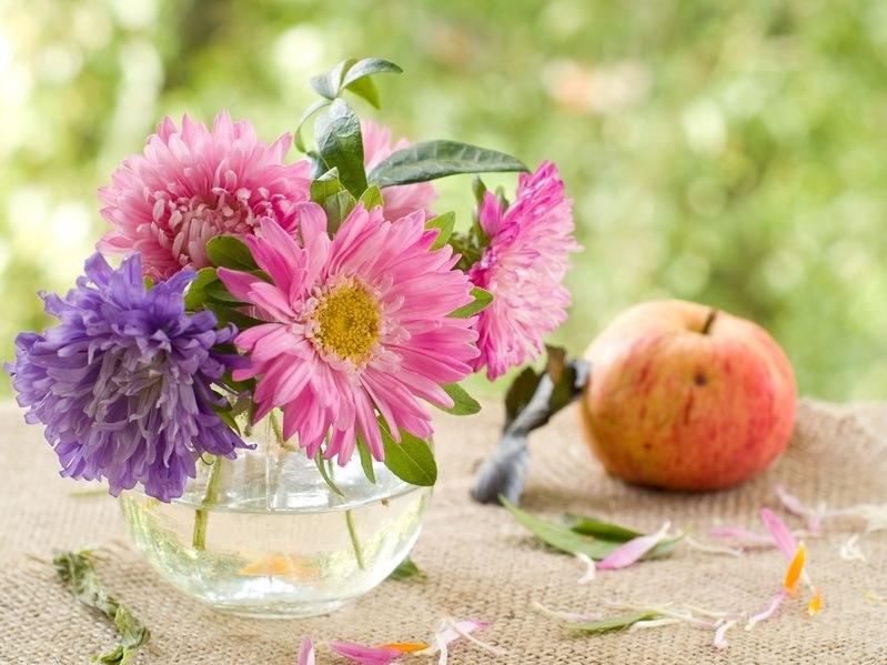 Przedłuż życie kwiatom ciętym /©123RF/PICSEL