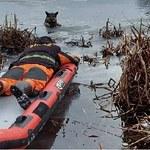 Przednimi łapami trzymał się lodu. Strażacy uratowali owczarka