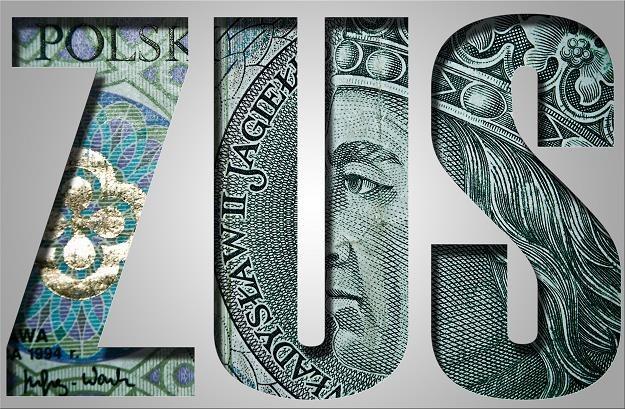 """Przedsiębiorcy chwalą założenia """"małego ZUS-u"""" /©123RF/PICSEL"""
