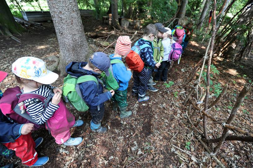 Przedszkole leśne w Wessling w Niemczech /Getty Images