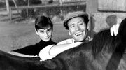 Przegląd filmów Audrey Hepburn w Iluzjon