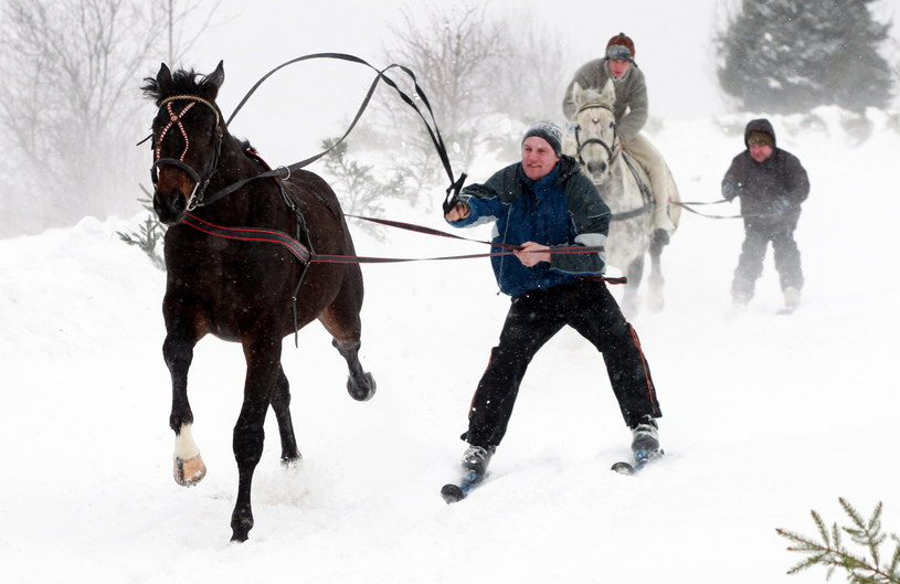 Przejazd treningowy skiringu (front) i ski-skiringu (z tyłu) /Grzegorz Momot /PAP