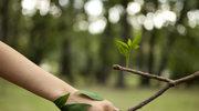 Przekazując 1% podatku, chronisz przyrodę