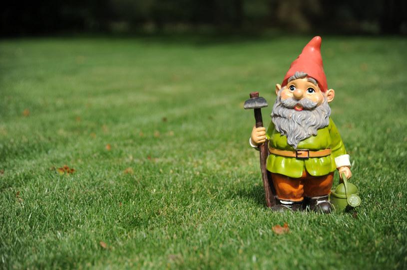 Przemyśl dobrze kwestię ozdób do ogrodu /123RF/PICSEL