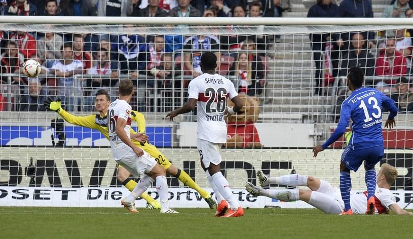 Przemysław Tytoń w bramce VfB Stuttgart /AFP
