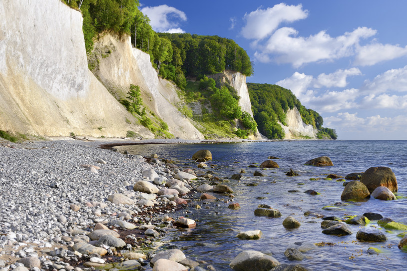 Przepiękne kredowe klify Jasmundu to jedno z najpiękniejszych miejsc nad całym Morzem Bałtyckim / fot. Francesco Carovillano/DZT /materiały promocyjne