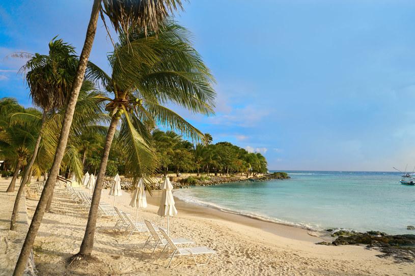 Przepiękne plaże półwyspu Jukatan /123RF/PICSEL