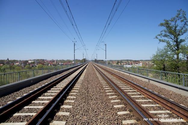 Przetarg przepadł. Następny odcinek Rail Baltiki bez projektu. Fot. PKP PLK /Informacja prasowa