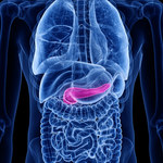 Przewlekłe zapalenie trzustki: Przyczyny, objawy i leczenie