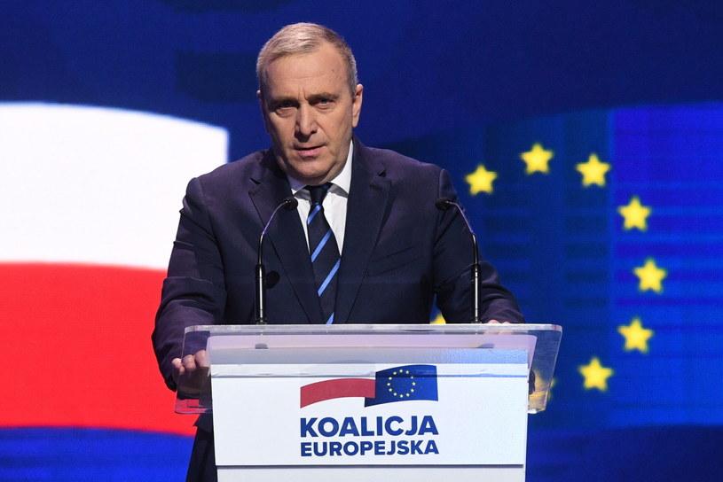 Przewodniczący PO Grzegorz Schetyna przemawia podczas konwencji Koalicji Europejskiej /Radek  Pietruszka /PAP