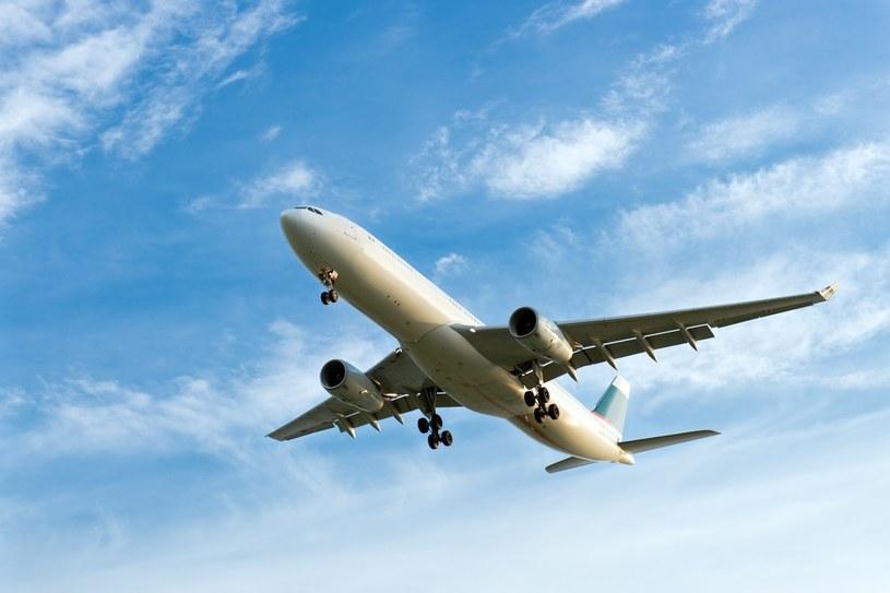 Przewoźnicy, w tym polski LOT, liczą, że w wakacje ruch lotniczy w końcu mocno odbije się od dna /123RF/PICSEL