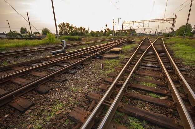 Przewozy Regionalne uruchamiają średnio 1,8 tys. pociągów w ciągu doby /©123RF/PICSEL