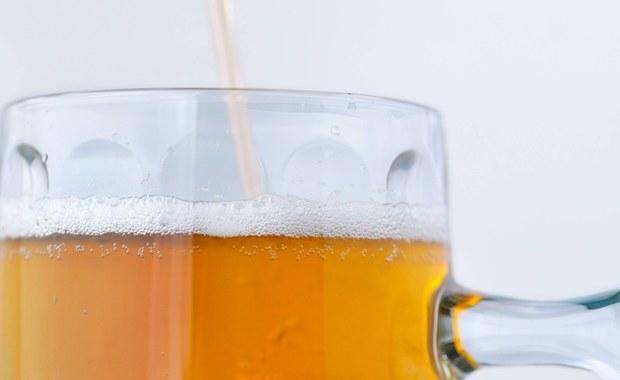 Przez ocieplenie klimatu może zabraknąć... piwa