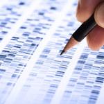 Przeznaczenie zapisane w genach?