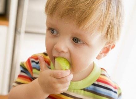 Przeżuwanie pokarmu dziąsłami nie jest łatwe /© Panthermedia