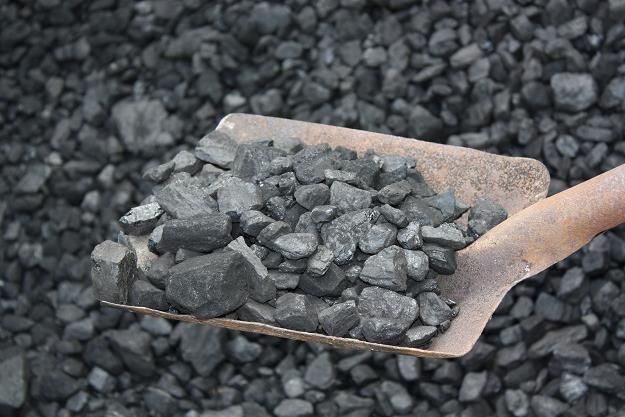 Przy sprzedaży węgla ingeruje się w prywatność kupujących? /©123RF/PICSEL