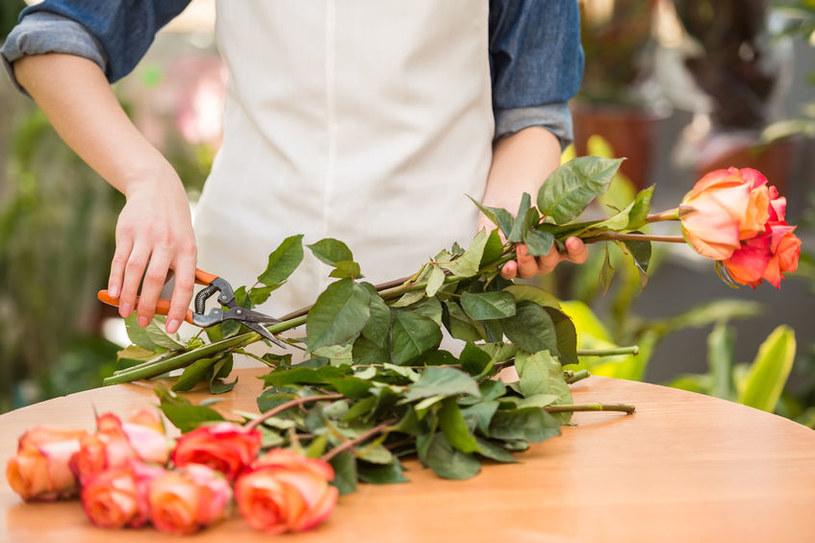 Przycinanie róż /©123RF/PICSEL