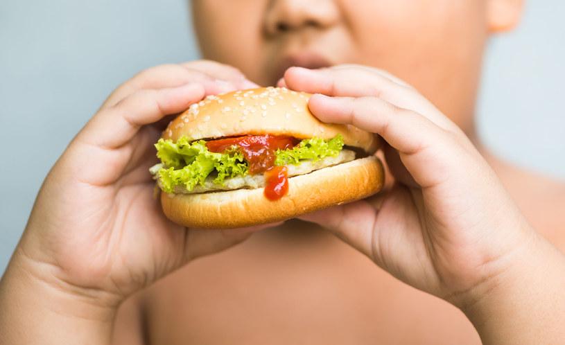 Przyczyną otyłości w ponad 90 proc. przypadków jest przewlekły brak równowagi między energią dostarczaną z pożywieniem a wydatkowaną /123RF/PICSEL