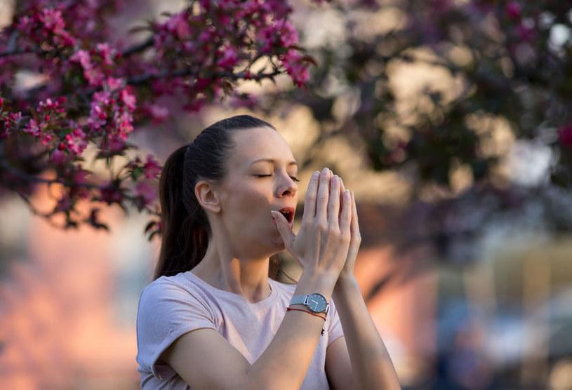 Przyczyną zespołu Kounisa może być alergia na pyłki /123RF/PICSEL