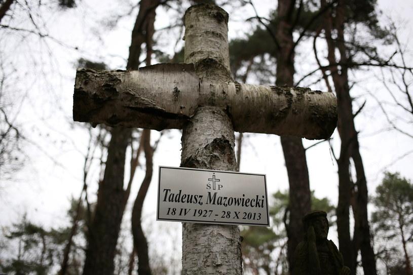 Przygotowany do pogrzebu grób rodzinny na cmentarzu w Laskach pod Warszawą /Leszek Szymański /PAP