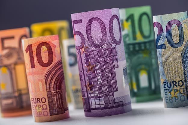 Przyjęcie euro jest receptą na przezwyciężenie gospodarczych problemów? /©123RF/PICSEL