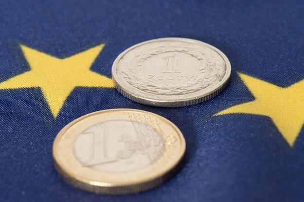 Przyjmiemy euro, gdy będzie to w naszym interesie i osiągniemy poziom zbliżony do Niemiec /©123RF/PICSEL