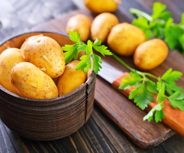 Przyszedł czas na młode ziemniaki