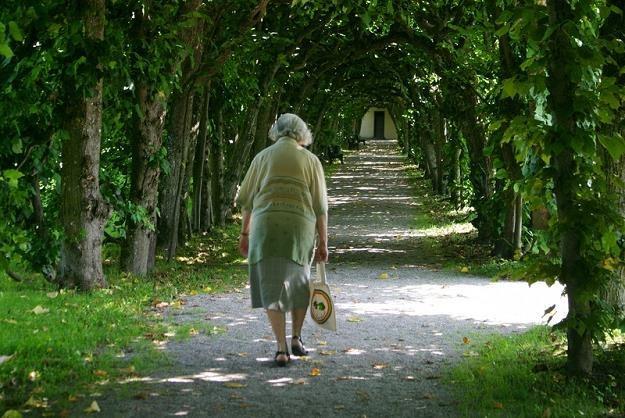 Przyszłoroczna waloryzacja emerytur budzi emocje /©123RF/PICSEL