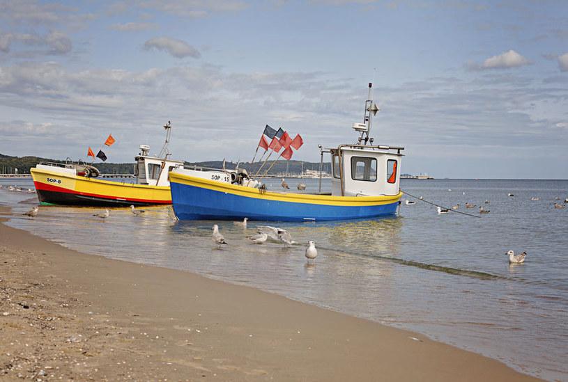 Przyszłość polskich rybaków pozostaje niepewna /123RF/PICSEL