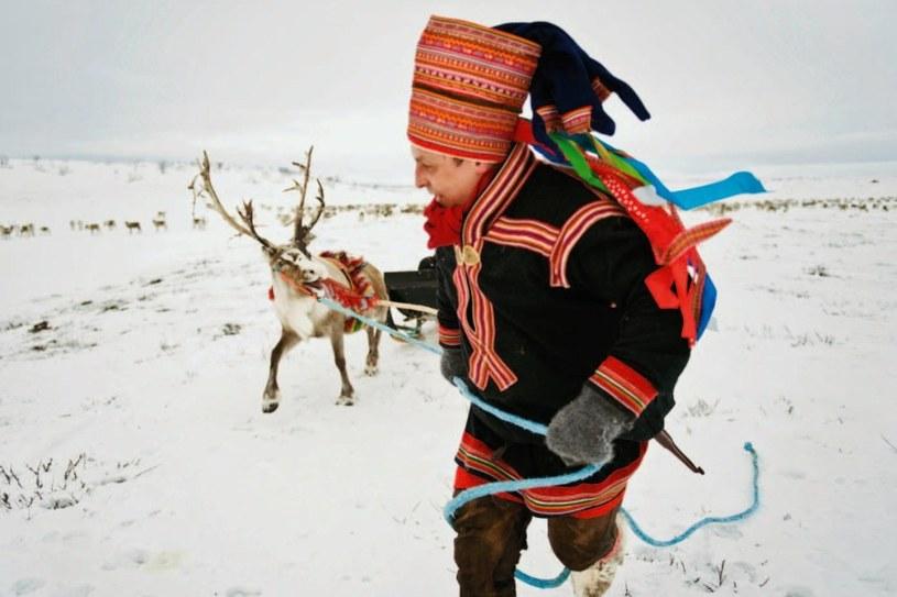 Przywilej hodowli reniferów mają w Norwegii ludzie z plemion Saamów. Żyją w wioskach górskich, a wiosną i latem całe miesiące spędzają na górskich polanach ze swoimi stadami /Twój Styl