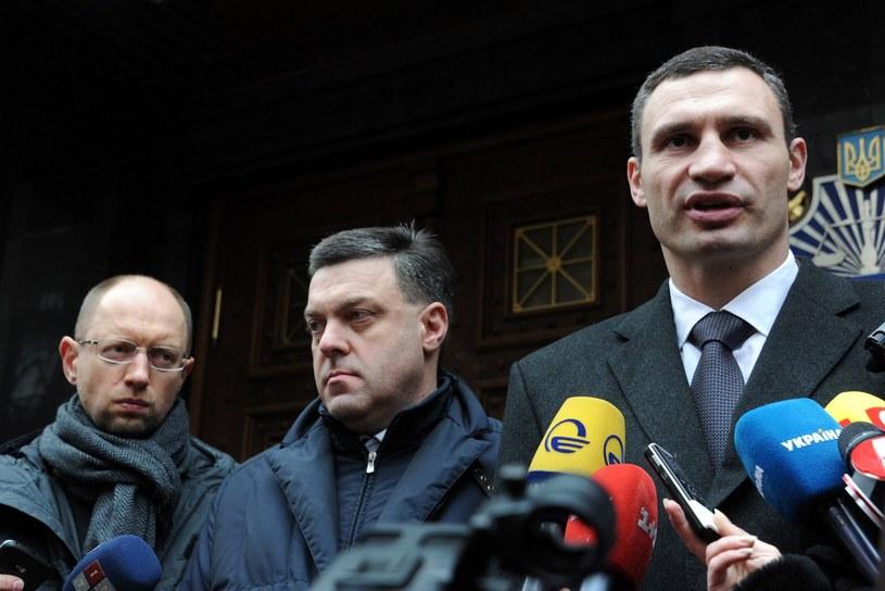 Przywódcy opozycji: Jaceniuk, Tiahnybok i Kliczko /AFP
