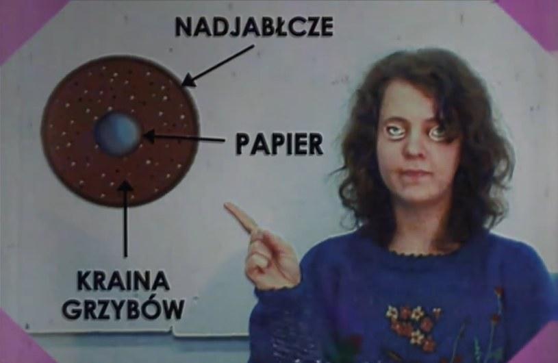 Pseudoedukacyjny program telewizyjny z czasów PRL, internetowa sensacja, a może eskperyment? Nikt nie wie czym naprawdę jest Kraina Grzybów /YouTube