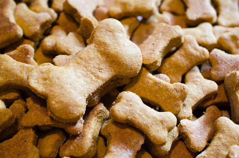 psie przysmaki /© Photogenica
