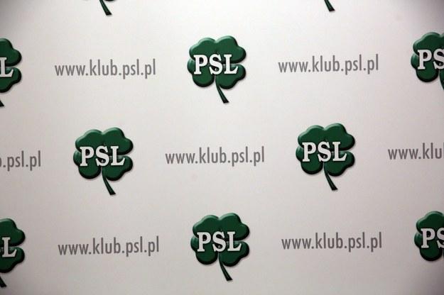 PSL nie będzie musiało zwracać subwencji / Tomasz Gzell    /PAP