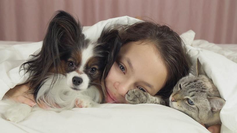 Psy i koty pomagają się otworzyć /123RF/PICSEL
