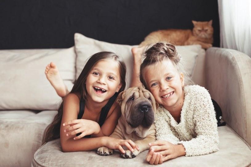 Psy kochają dzieci /©123RF/PICSEL