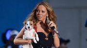 Psy Mariah Carey mają... własnego szofera!