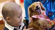 Psy pomagają dzieciom!