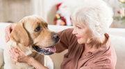Psy pomagają zdiagnozować poważne choroby