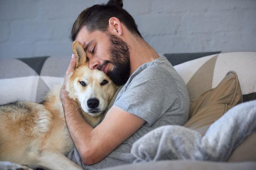Psy są towarzyskie /©123RF/PICSEL