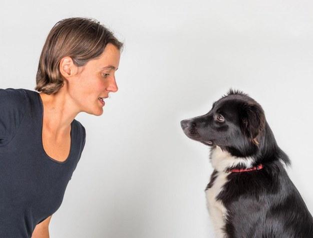 Psy używają mowy ciała i wyrazu pyska do komunikacji zarówno z pobratymcami, jak i ludźmi. /Sylvio Tüpke /Materiały prasowe