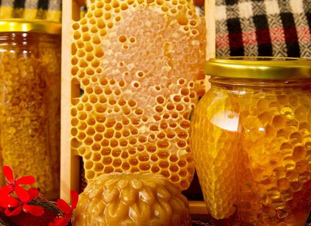 Pszczołom zawdzięczamy sporo wspaniałych produktów. /© Panthermedia